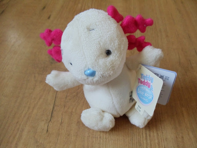 eduardo teddy from the blue nose friends range from Tatty Teddy