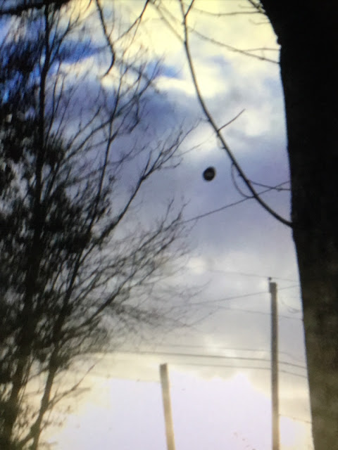 UFO News ~ Dark Orb Over Marshal, North Carolina plus MORE Ball%252C%2Bsphere%252C%2B2018%252C%2Bancient%252C%2Bsea%2Bshell%252C%2Bshell%252C%2Blife%252C%2BMars%252C%2Brover%252C%2BNASA%252C%2Bsecret%252C%2Bsurface%252C%2Balien%252C%2Blife%252C%2BUFO%252C%2BUFOs%252C%2Bsighting%252C%2Bsightings%252C%2Bnews%252C%2Bmedia%252C%2Bodd%252C