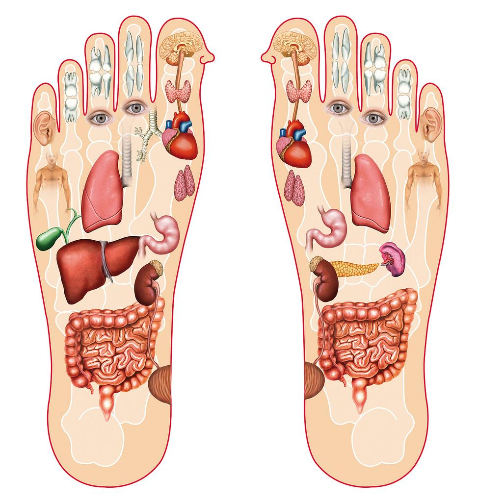 Đào tạo nghề spa - những để ý khi học massage bàn chân hiệu quả
