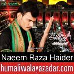 https://www.humaliwalyazadar.com/2018/09/naeem-raza-haider-nohay-2019.html
