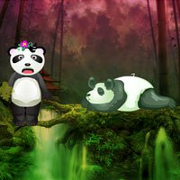 WowEscape Giant Panda Forest Escape Walkthrough