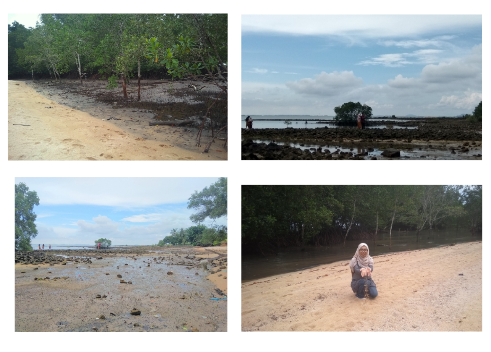 Yulia Marza Lifestyle Blog Wisata Mangrove Merdeka Ke Kampung Tua Serip Nongsa Batam