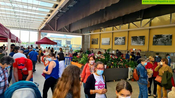 Barlovento celebra su tradicional mercadillo cuya temática será el día de San Valentín