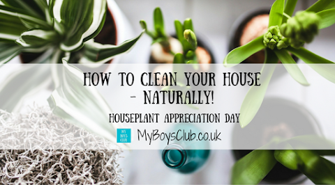 How to clean your house - naturally!