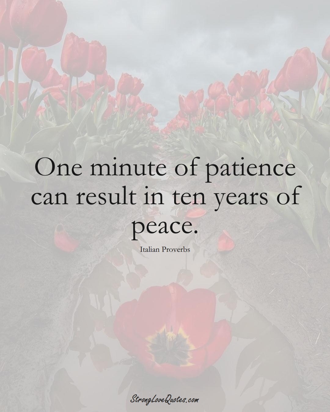 One minute of patience can result in ten years of peace. (Italian Sayings);  #EuropeanSayings