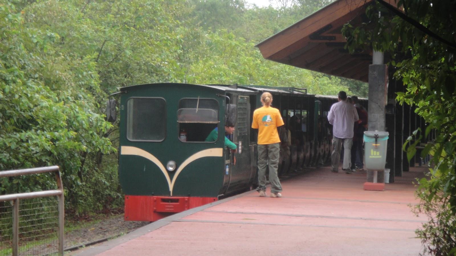 Поезд в парк Игуасу в Аргентине