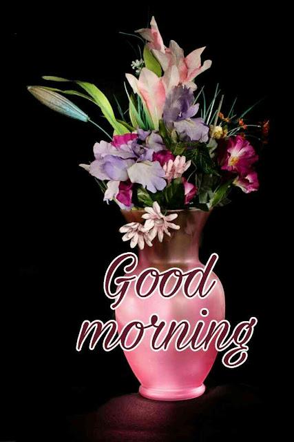 good morning ki beautiful photos