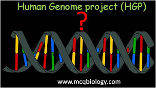 multiple choice on Human genome project