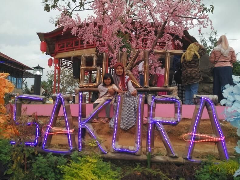 foto bukit sakura lampung di kemiling