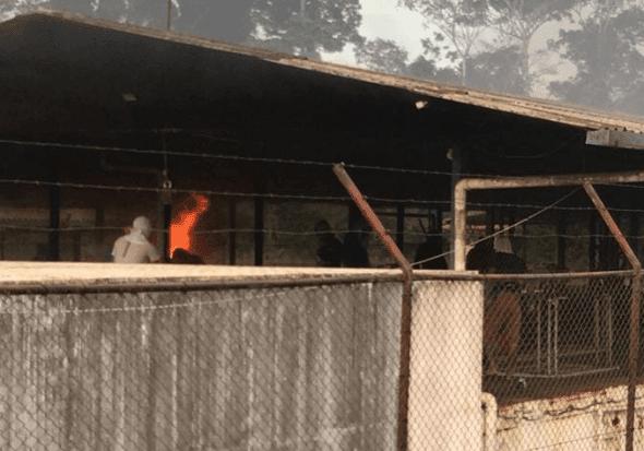 Rebelião em presídio no Pará tem 52 mortos e agentes reféns