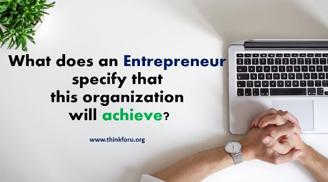 Cover Image of What does an entrepreneur specify that this organization will achieve