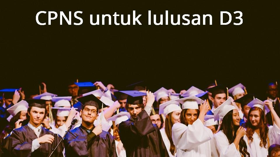 formasi CPNS 2021 untuk lulusan Diploma 3