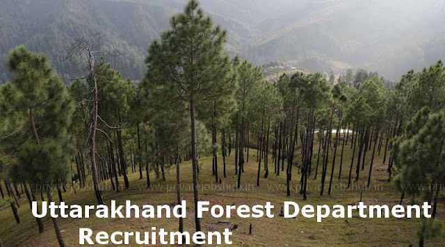 Uttarakhand Forest Department Recruitment