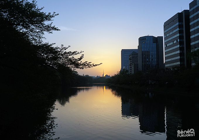 Sunset from Maizuru park