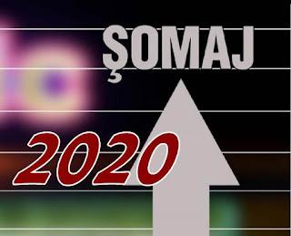 previziuni somaj bugetari 2020 cota unica anulata