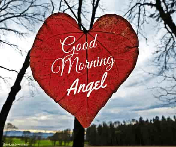 good morning angel pics for her