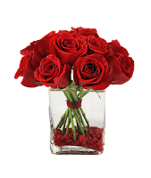 verschiedene Rosen