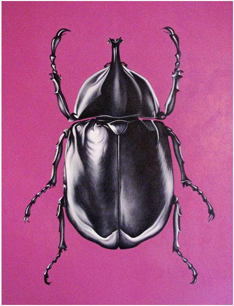 beetle on pink art print