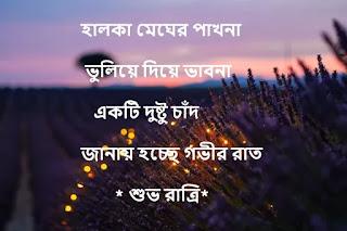 Bangla Good Night Shayari - New Bangla Shuvo Ratri SMS [ Bangla Love SMS}