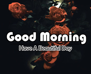 New Good Morning 4k Full HD Images Download For Daily%2B99