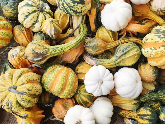 array-of-pumpkins