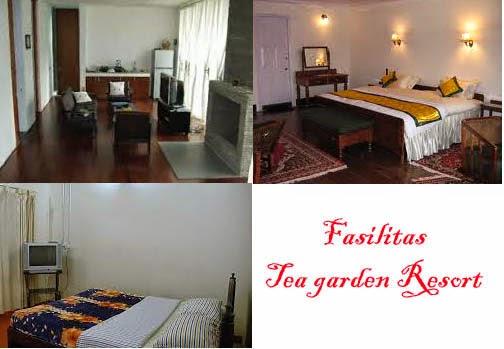 Fasilitas Tea Garden Resort
