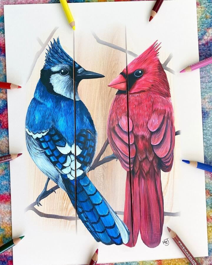 06-Bluejay-and-cardinal-Morgan-Johnson-www-designstack-co