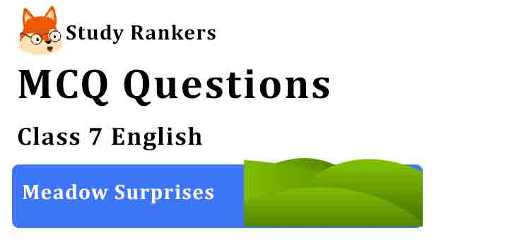 MCQ Questions for Class 7 English Meadow Surprises Honeycomb
