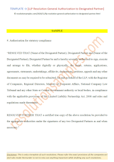 llp resolution general authorization to designated partner