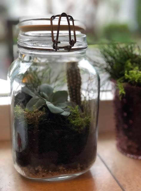 mini-ecosysteem