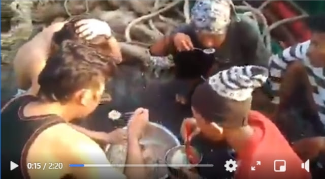 Viral! ABK Indonesia di Kapal China Diberi Makan Tak Layak