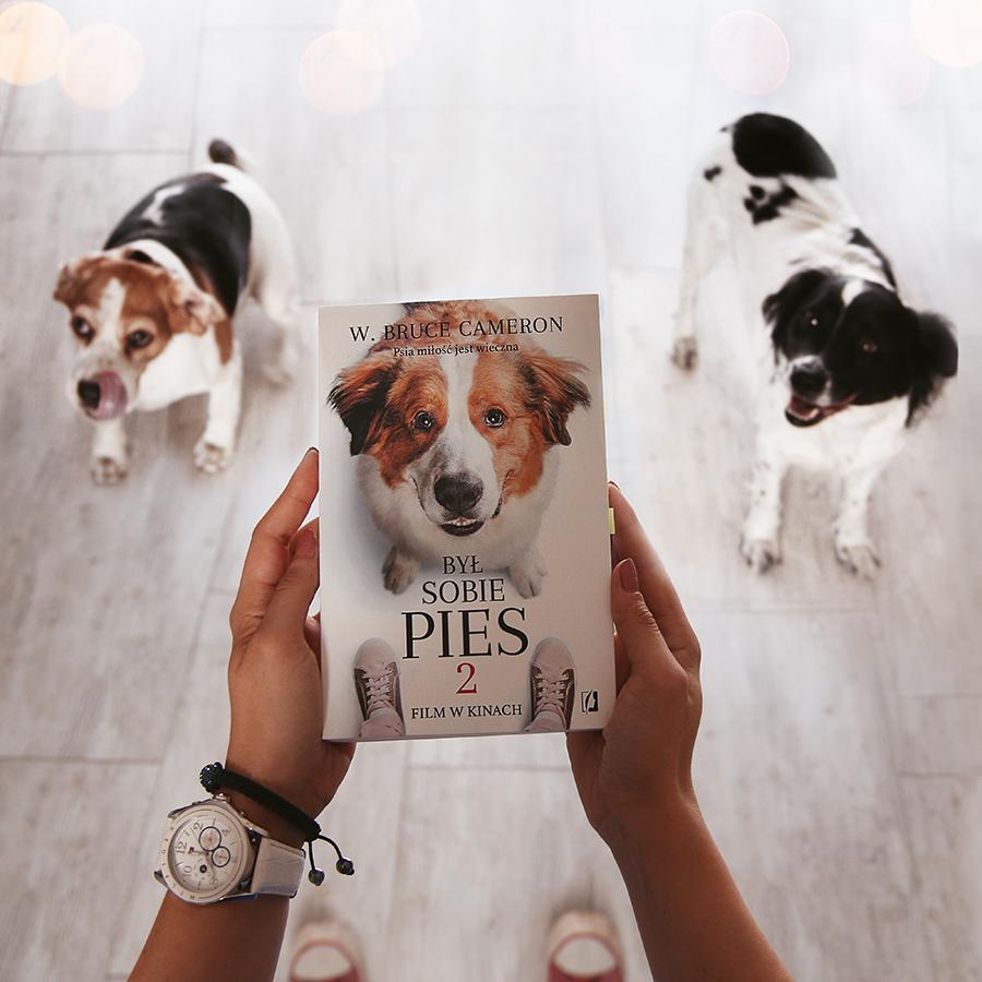 #108 Był sobie pies 2. - W. Bruce Cameron - recenzja - czy warto przeczytać?