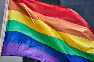bandeira inclusiva