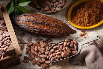 La Historia más deliciosa... ¡El chocolate!