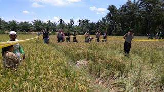 Mayat Perempuan Ditemukan Dalam Sawah di Aceh Tamiang