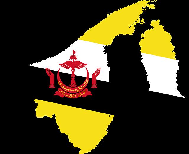 Profil informasi negara Brunai