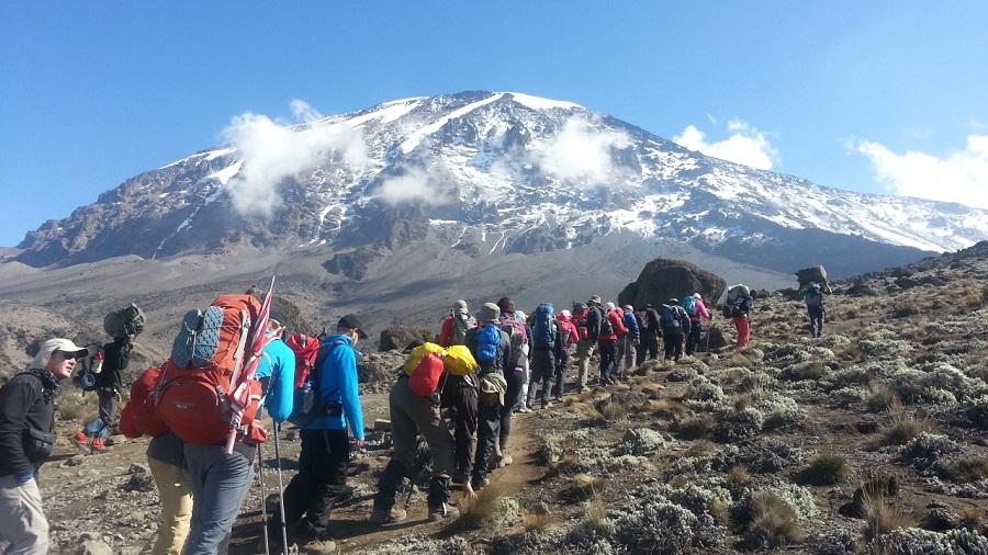 Подняться на гору Килиманджаро в Африке