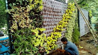 Jasa Pembuatan Taman Vertikal di Sentul