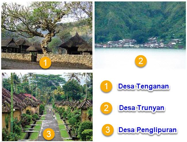 Desa Unik di Provinsi Bali