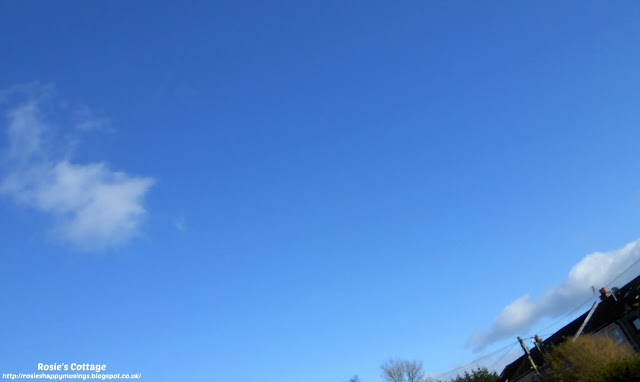 Spring is almost here - beautiful blue skies and perfect fluffy clouds bring joy to the garden.