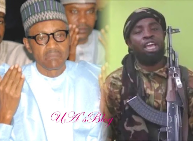 Breaking: Don't Return To Borno Again, Shekau, 'Boko Haram' Leader Warns Buhari