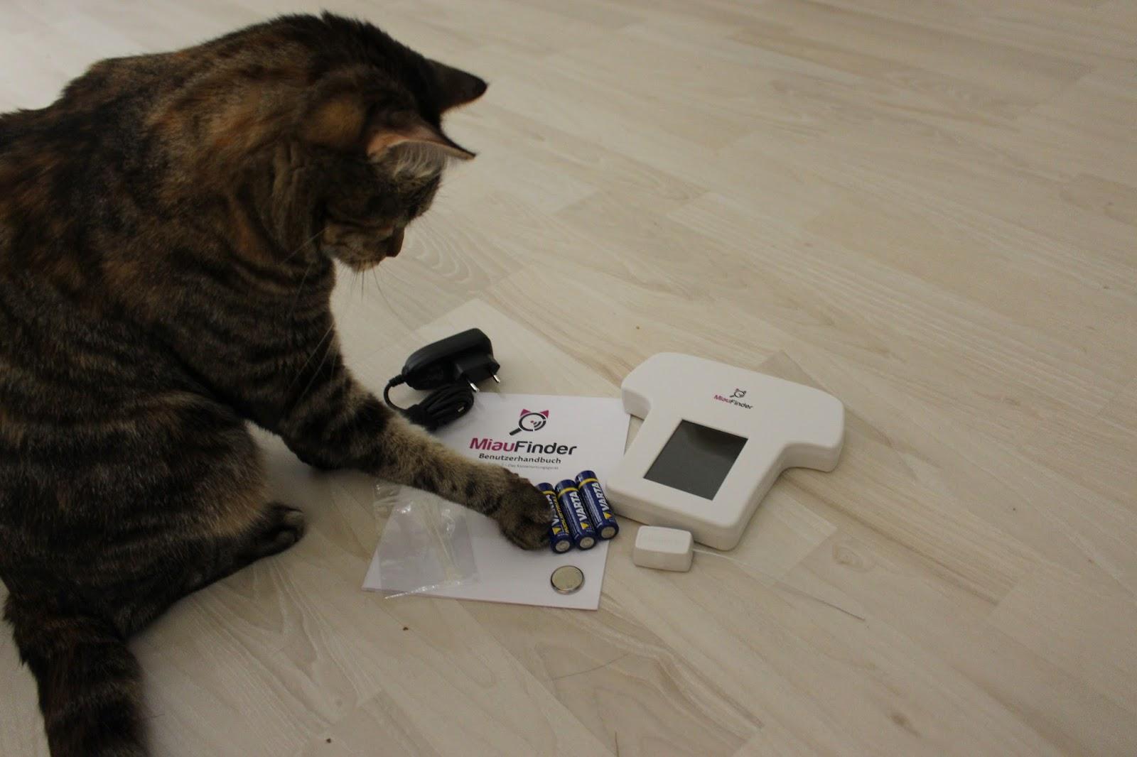 sender für katzen