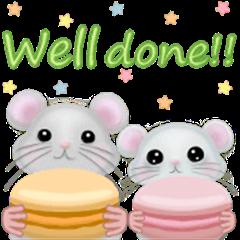 Macaron Mouse,English Edition