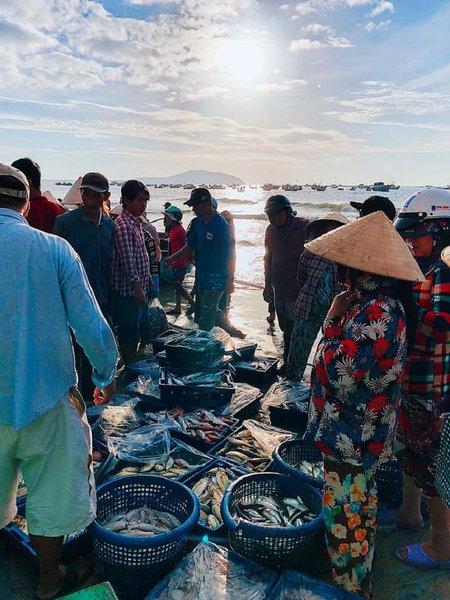 Đến làng chài, bạn sẽ được trải nghiệm cuộc sống và nghề chài lưới của các ngư dân. Khi các chiếc thúng nhỏ trở về, công sức đánh bắt được đổ ra một tấm bạt nhỏ, từ đây sẽ phân loại ra ghẹ, cá theo chủng loại, kích thước rồi bán lại cho khách du lịch hoặc người dân địa phương. Hải sản tươi sống giá rẻ được mua bán và trao đổi nhanh chóng tùy vào chất lượng, kích cỡ. Từ 9 giờ sáng trở đi, bãi biển lại bắt đầu thưa dần. Đến khoảng 10 giờ, trên bãi cát chỉ còn vài người nán lại bán cho bằng hết số hải sản ít ỏi cho những du khách tham quan trễ.