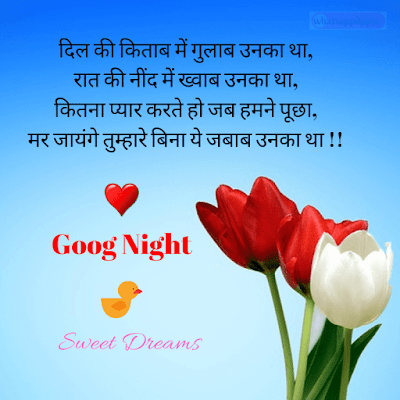 good-night-shayari-photo-hd