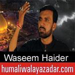 https://humaliwalaazadar.blogspot.com/2019/08/waseem-haider-nohay-2020.html