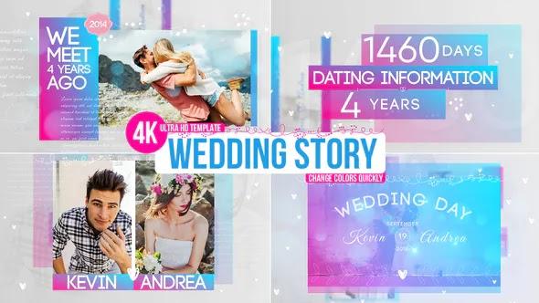 VIDEOHIVE WEDDING STORY - 22460320