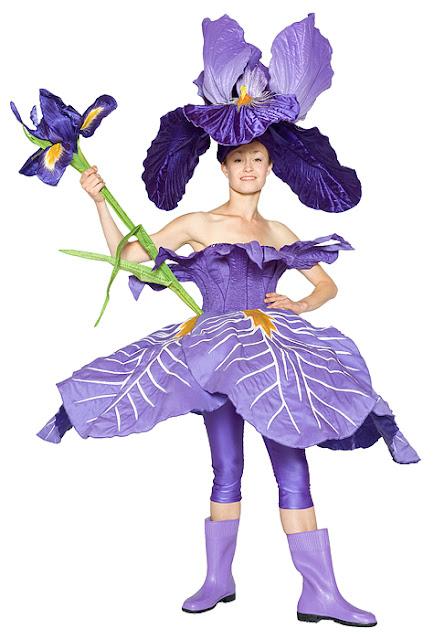 Disfraz de flor iris