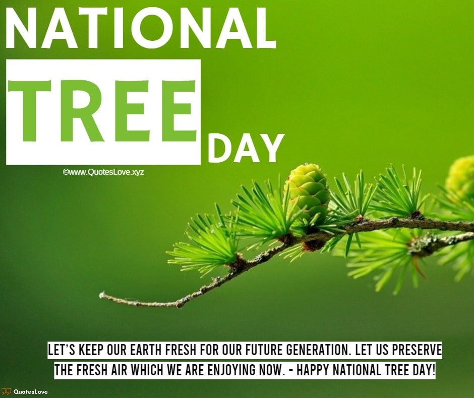 National Tree Day Quotes, Sayings, Wishes, Greetings, Messages, Images, Pictures, Poster