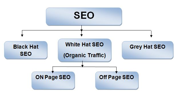 dental seo black hat seo best search engine seo software seo blog seo agency seomoz youtube seo